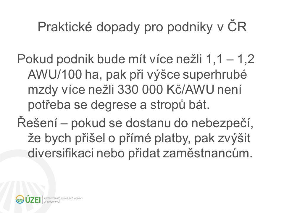 Praktické dopady pro podniky v ČR