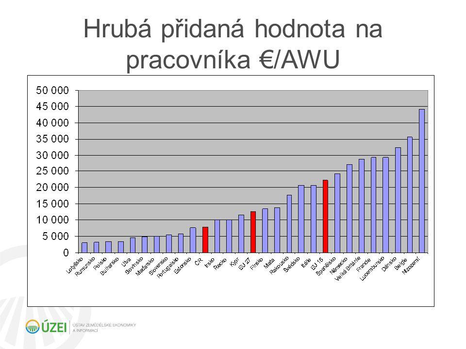 Hrubá přidaná hodnota na pracovníka €/AWU