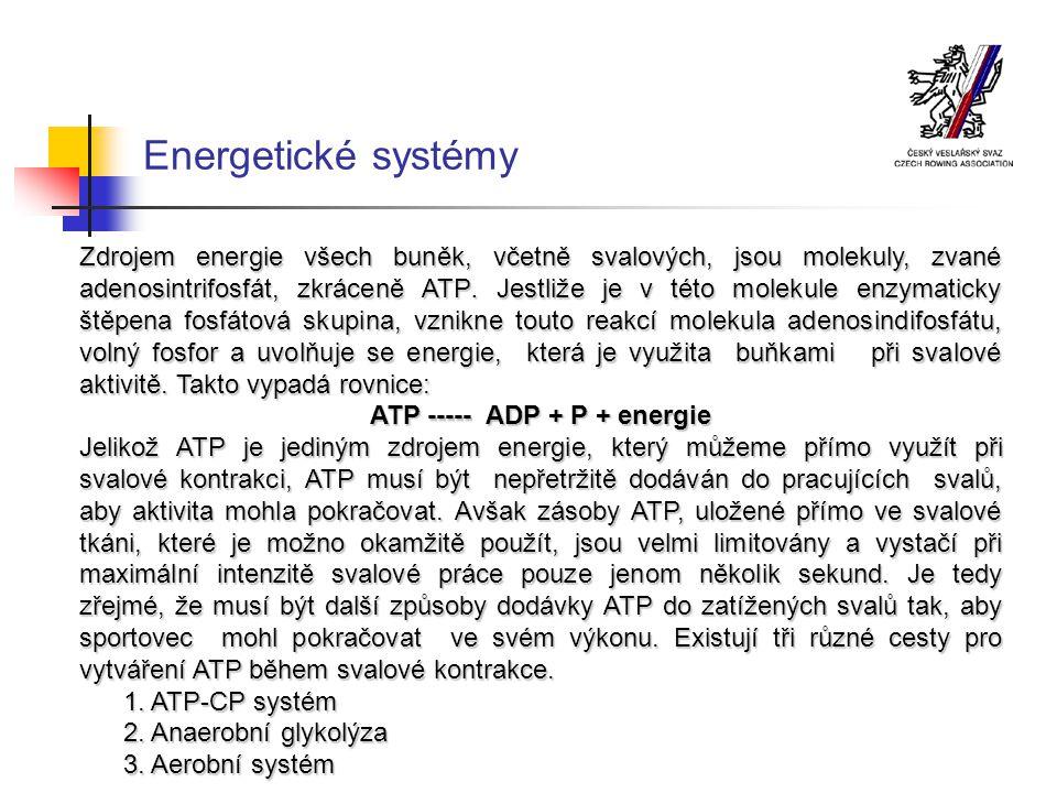 ATP ----- ADP + P + energie