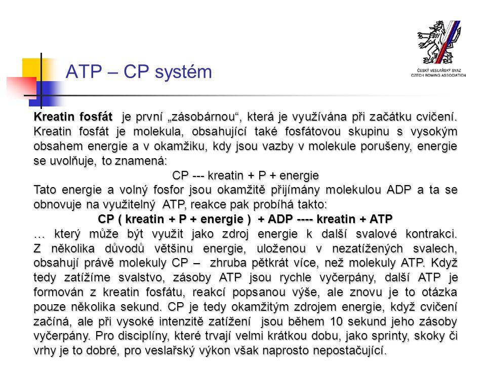 ATP – CP systém
