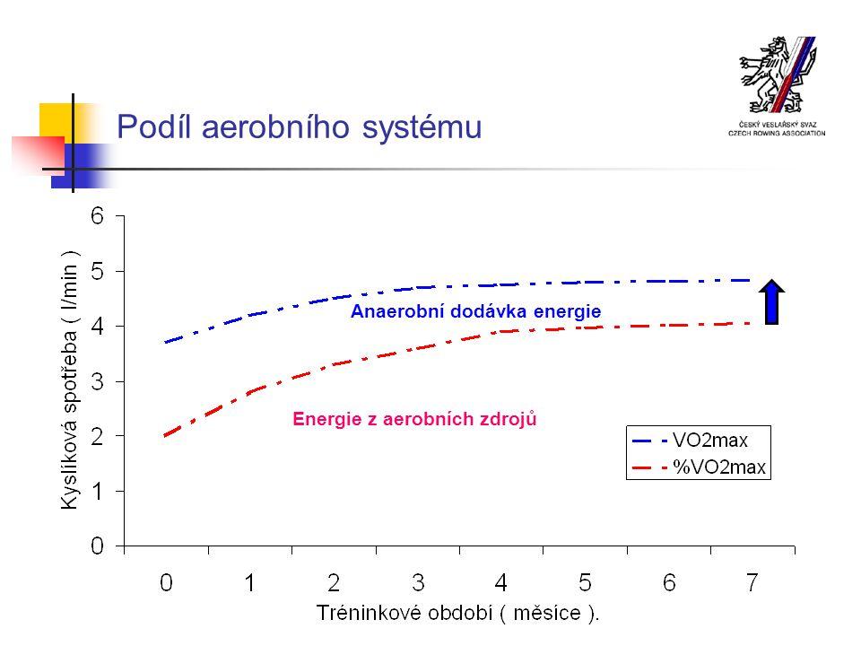 Podíl aerobního systému