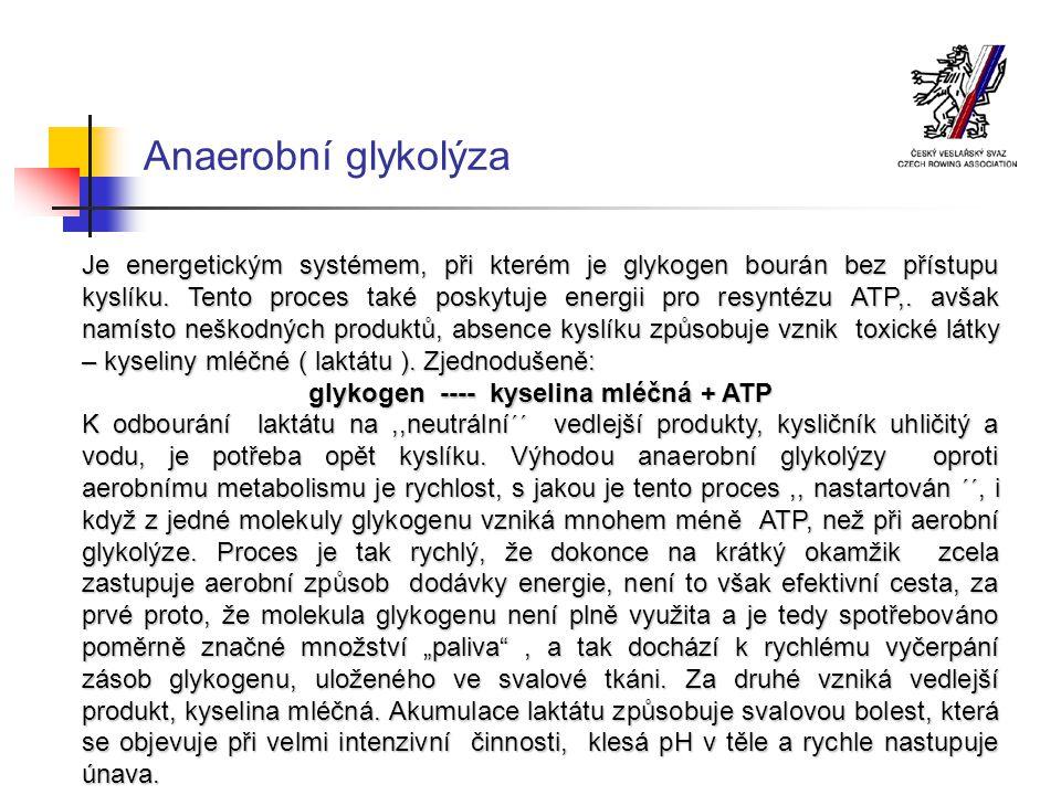 glykogen ---- kyselina mléčná + ATP