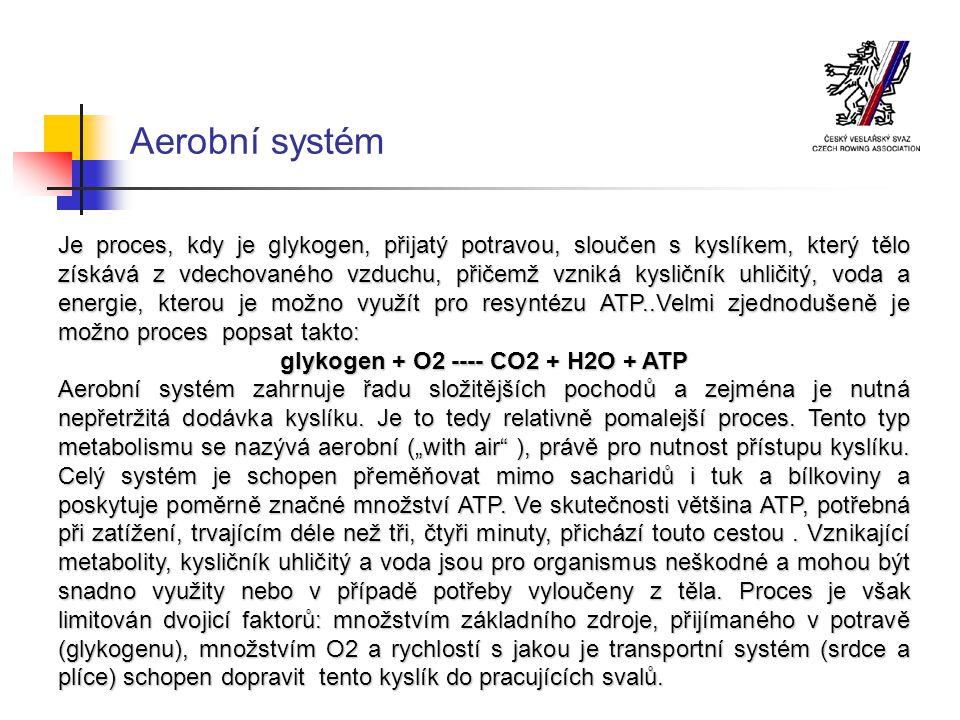glykogen + O2 ---- CO2 + H2O + ATP
