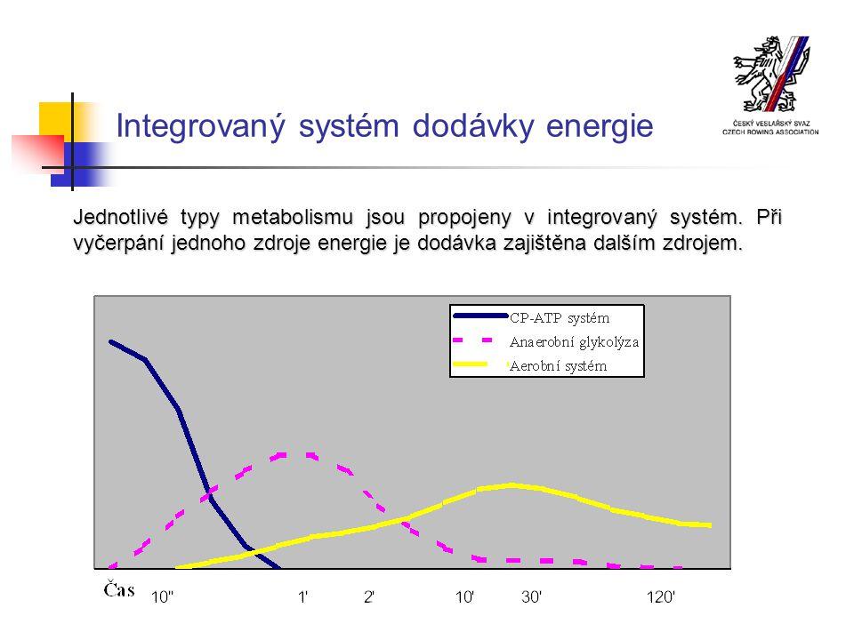 Integrovaný systém dodávky energie