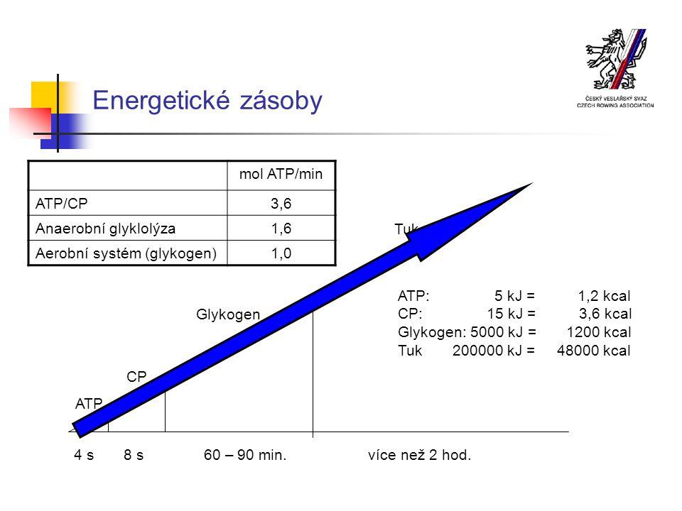 Energetické zásoby mol ATP/min ATP/CP 3,6 Anaerobní glyklolýza 1,6
