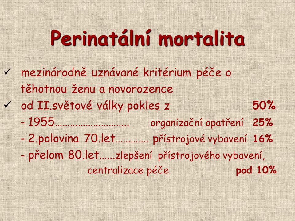 Perinatální mortalita