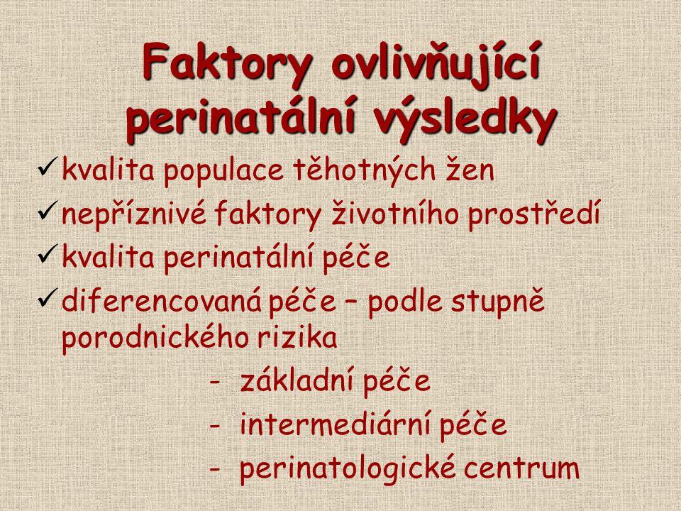 Faktory ovlivňující perinatální výsledky
