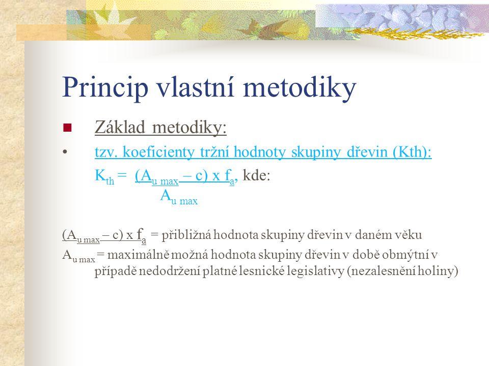 Princip vlastní metodiky