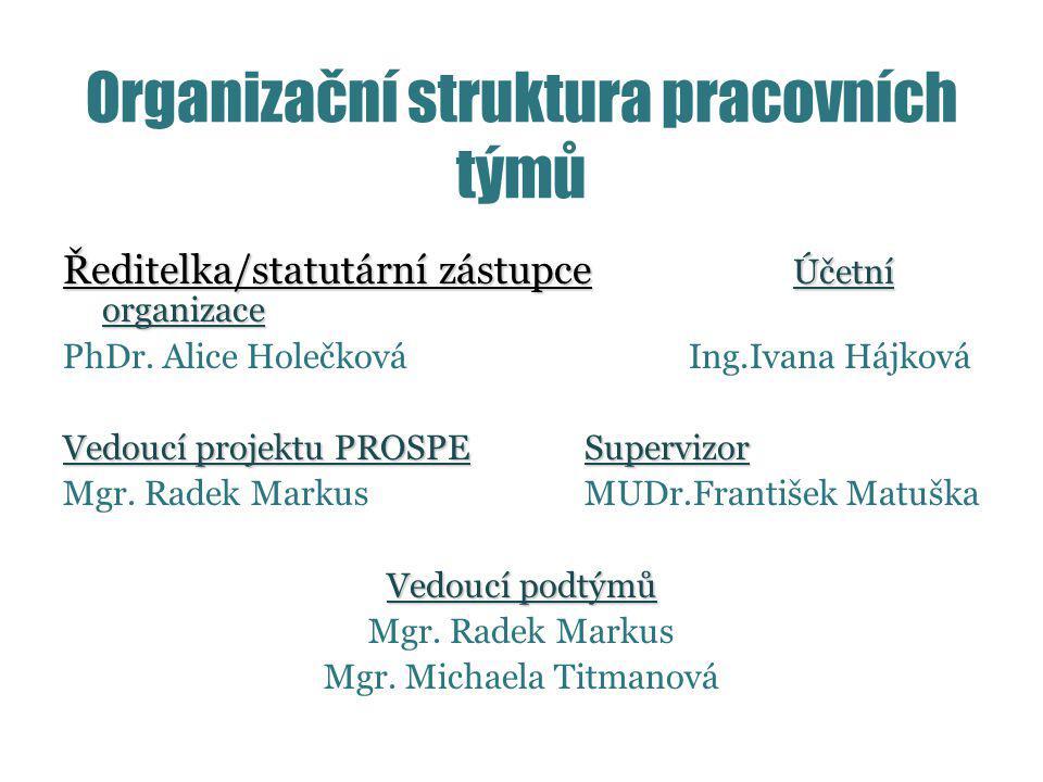 Organizační struktura pracovních týmů