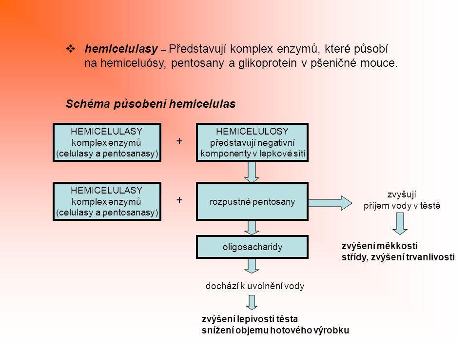 hemicelulasy – Představují komplex enzymů, které působí