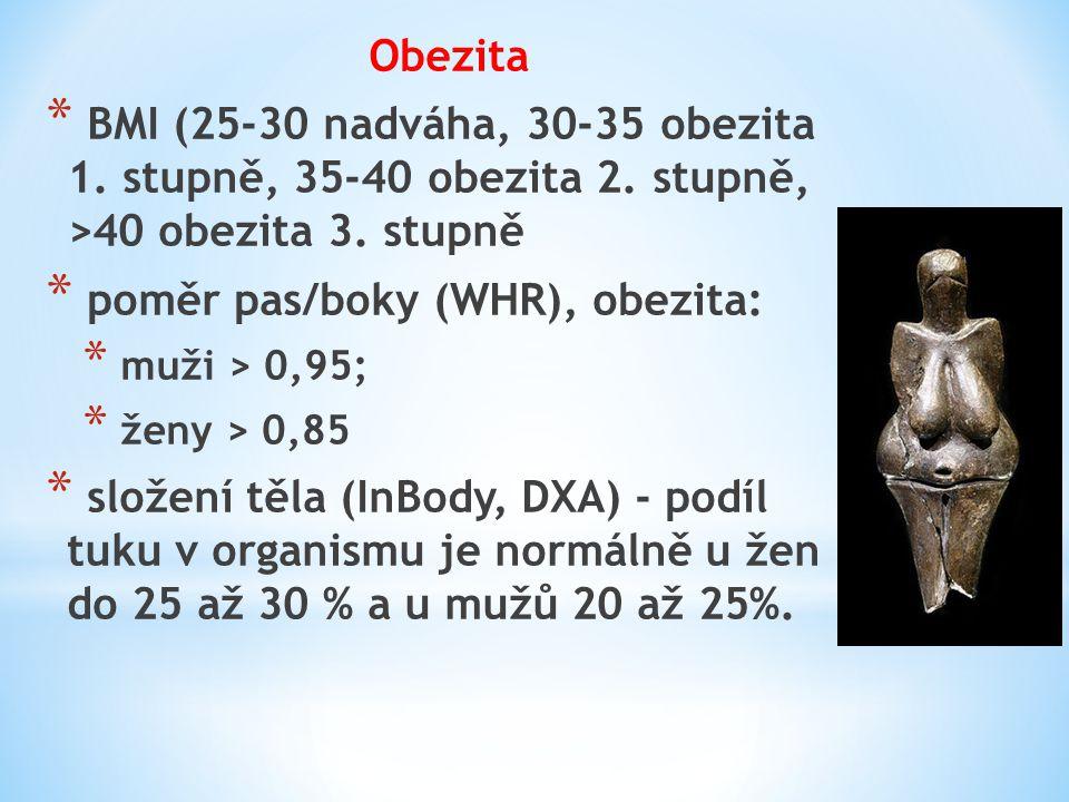 poměr pas/boky (WHR), obezita: