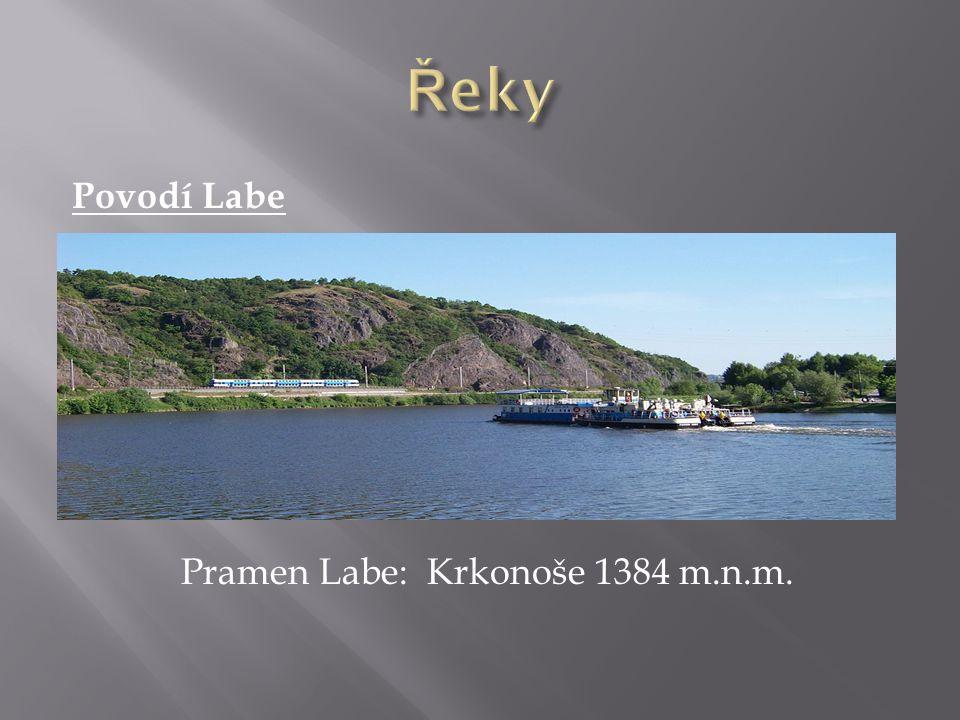 Řeky Povodí Labe Pramen Labe: Krkonoše 1384 m.n.m.