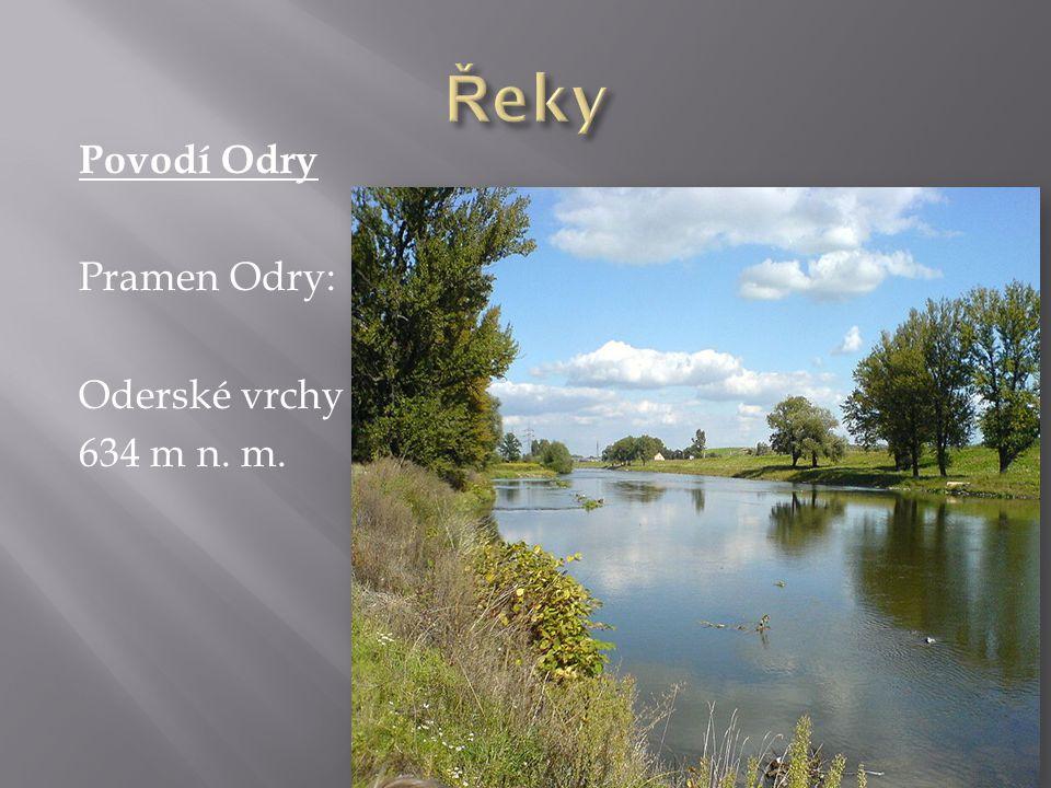 Řeky Povodí Odry Pramen Odry: Oderské vrchy 634 m n. m.