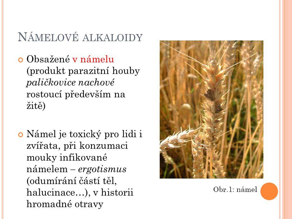 Námelové alkaloidy Obsažené v námelu (produkt parazitní houby paličkovice nachové rostoucí především na žitě)
