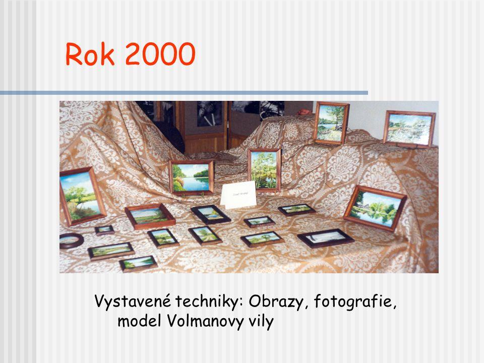 Rok 2000 Vystavené techniky: Obrazy, fotografie, model Volmanovy vily