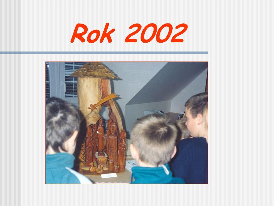 Rok 2002