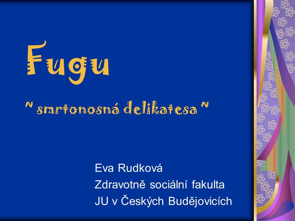 Fugu ~ smrtonosná delikatesa ~