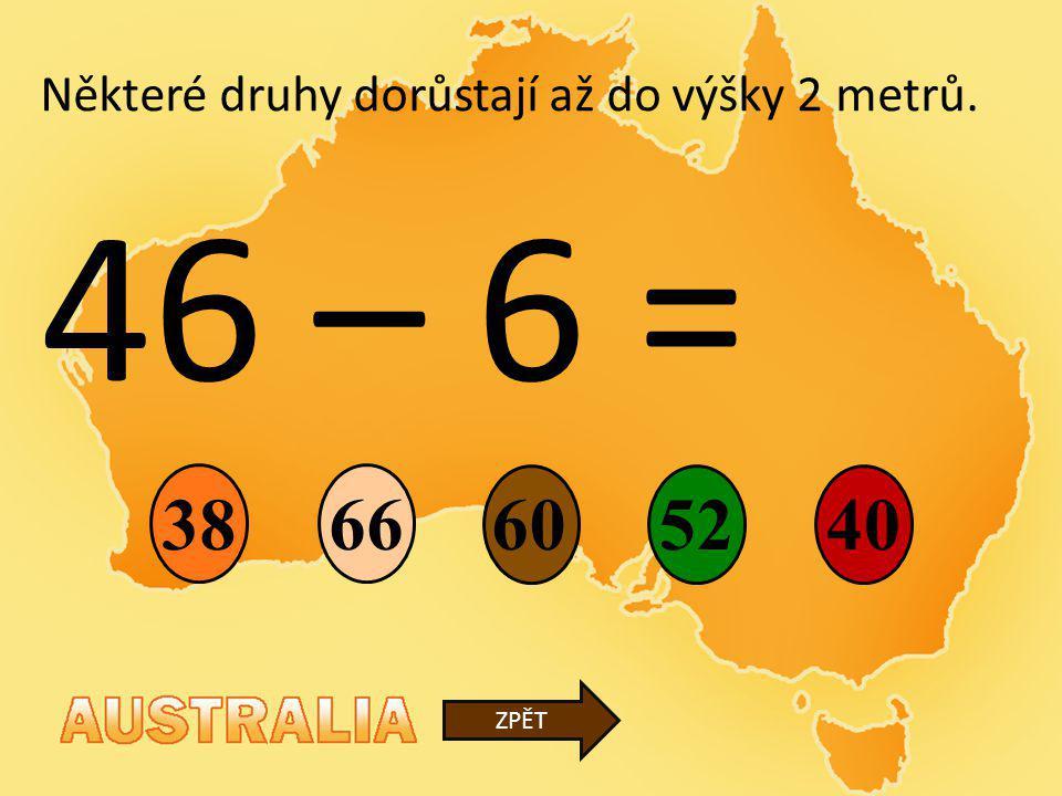 46 – 6 = 38 66 60 52 40 Některé druhy dorůstají až do výšky 2 metrů.