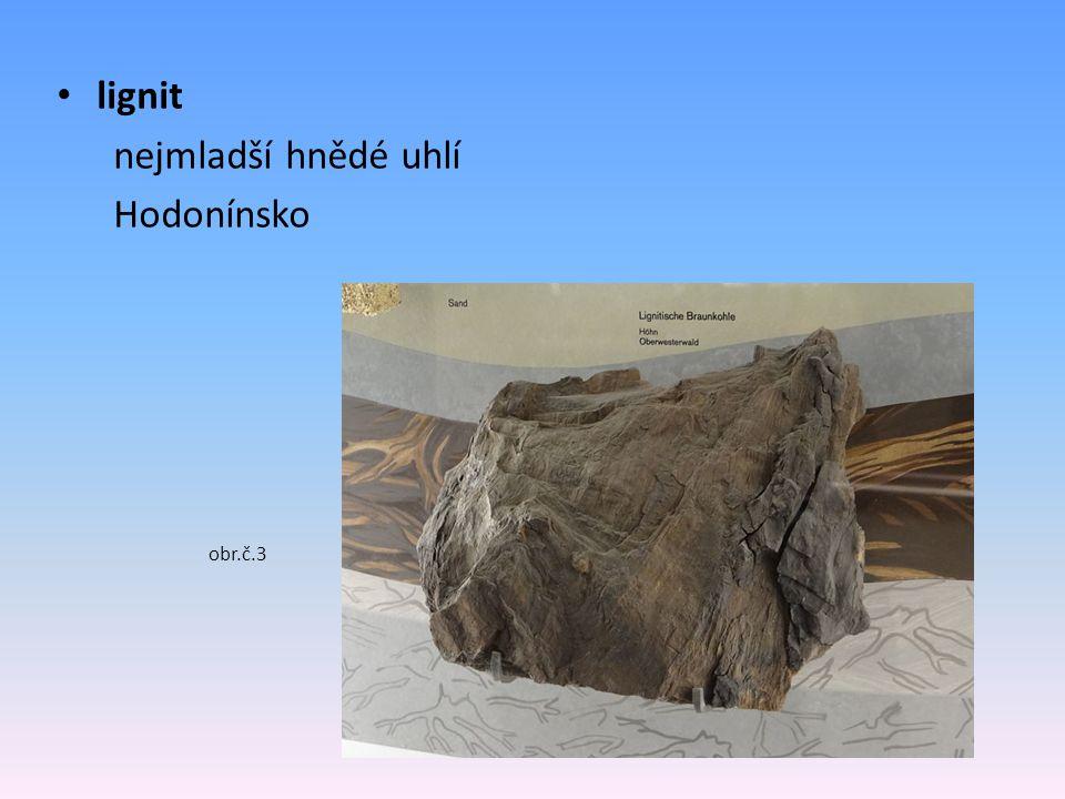 lignit nejmladší hnědé uhlí Hodonínsko obr.č.3