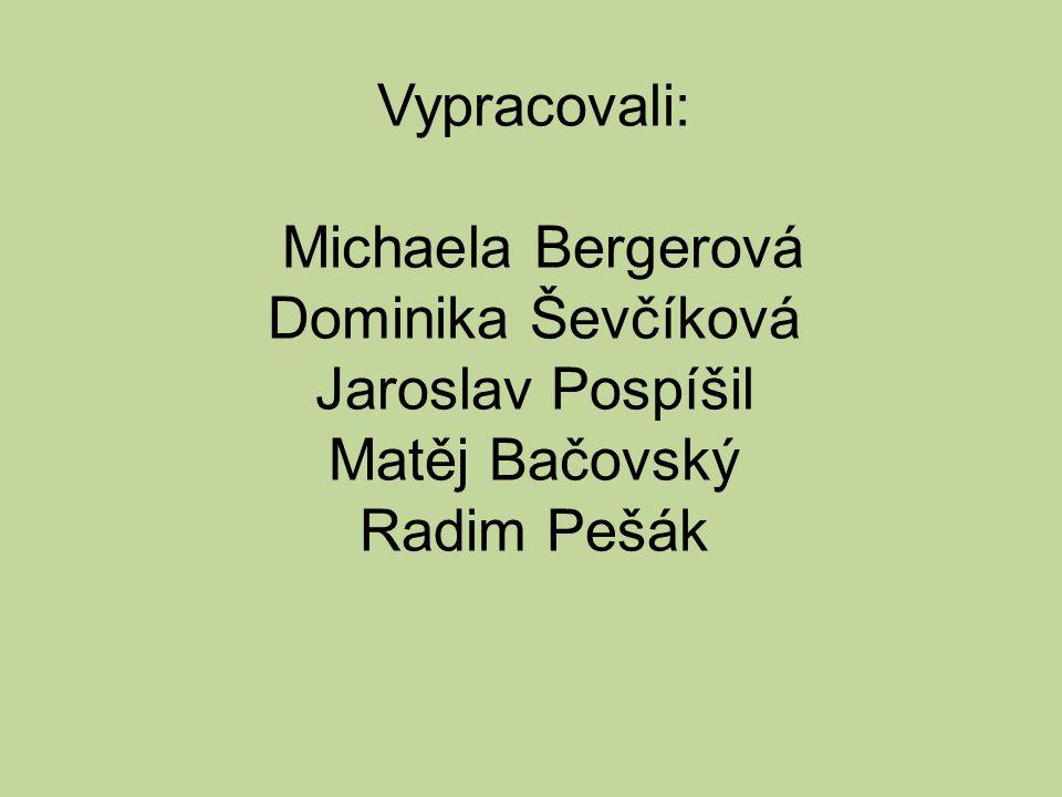 Vypracovali: Michaela Bergerová Dominika Ševčíková Jaroslav Pospíšil Matěj Bačovský Radim Pešák