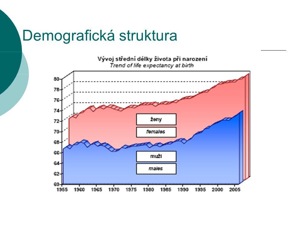 Demografická struktura