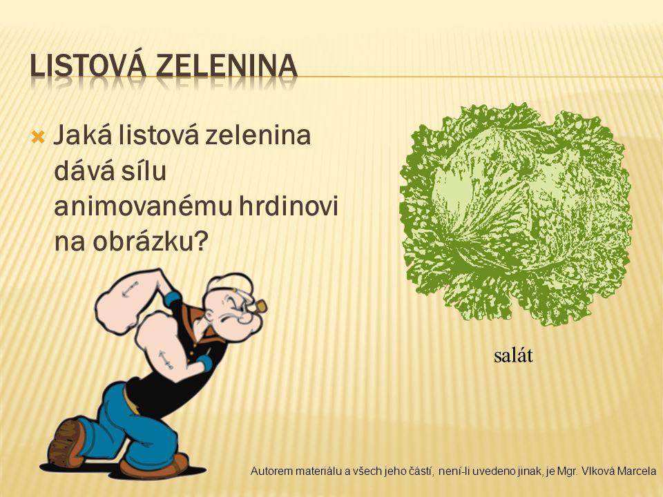 Listová zelenina Jaká listová zelenina dává sílu animovanému hrdinovi na obrázku salát.