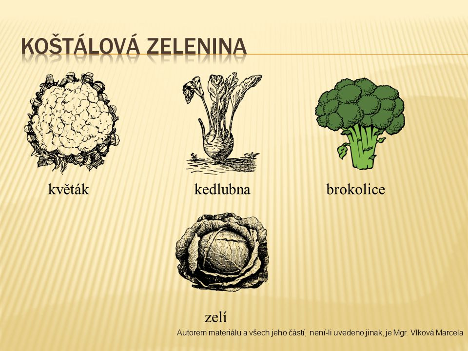 Koštálová zelenina květák kedlubna brokolice zelí