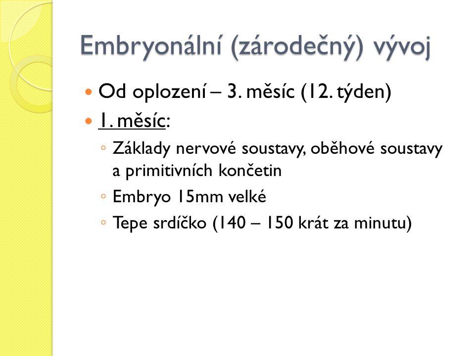 Embryonální (zárodečný) vývoj