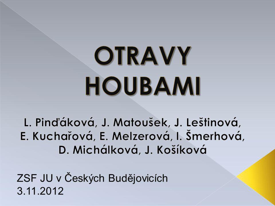OTRAVY HOUBAMI L. Pinďáková, J. Matoušek, J. Leštinová, E. Kuchařová, E. Melzerová, I. Šmerhová, D. Michálková, J. Košíková.