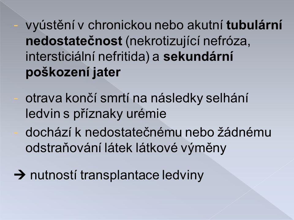 vyústění v chronickou nebo akutní tubulární nedostatečnost (nekrotizující nefróza, intersticiální nefritida) a sekundární poškození jater