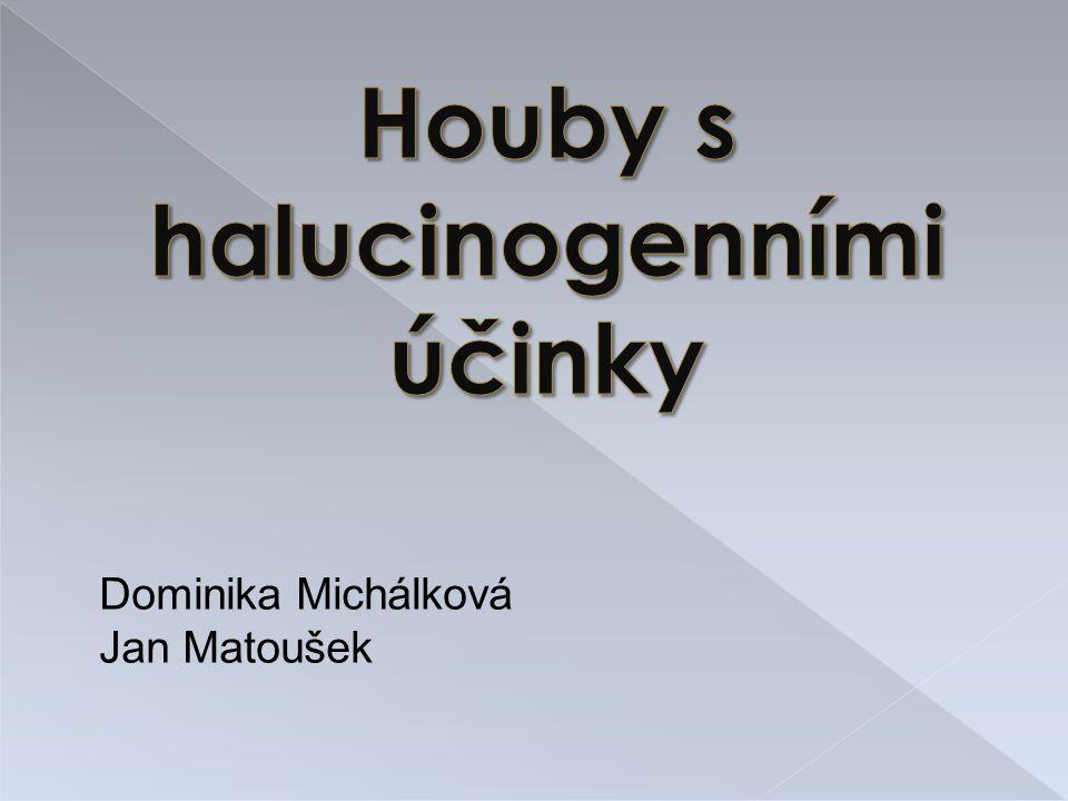 Houby s halucinogenními účinky