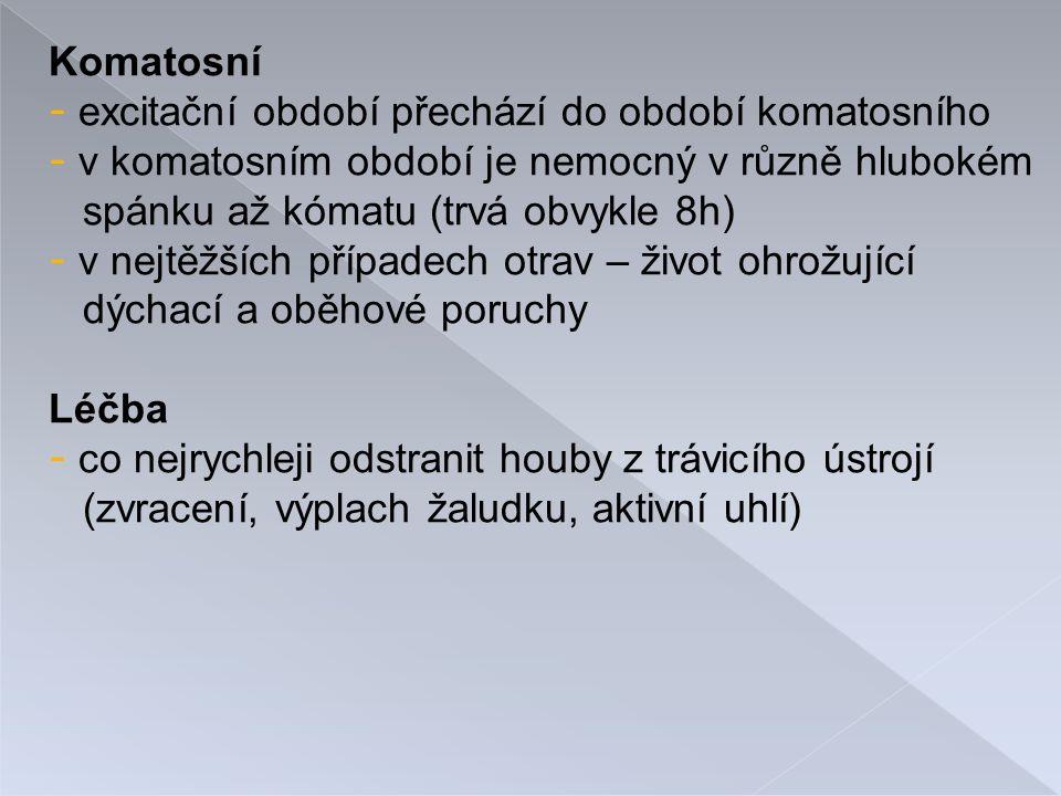 Komatosní excitační období přechází do období komatosního. v komatosním období je nemocný v různě hlubokém.