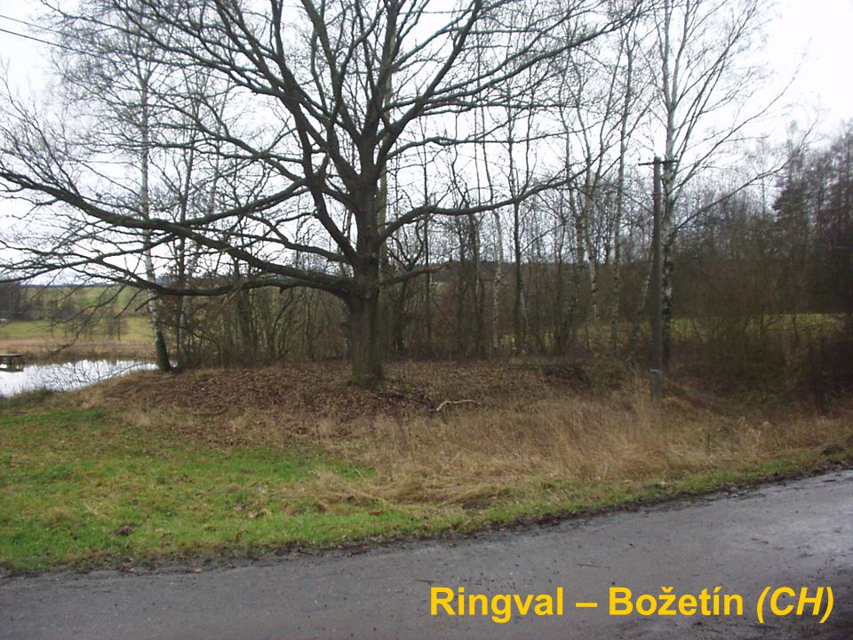 Ringval – Božetín (CH)