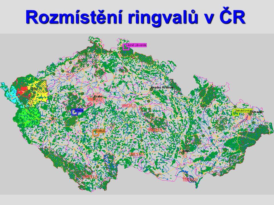 Rozmístění ringvalů v ČR