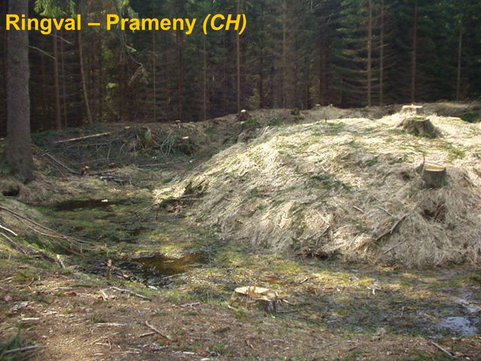 Ringval – Prameny (CH)
