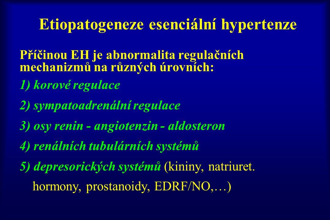 Etiopatogeneze esenciální hypertenze