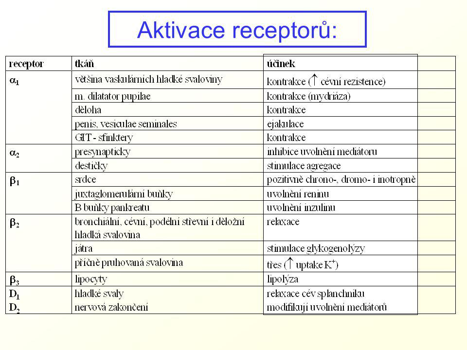 Aktivace receptorů: