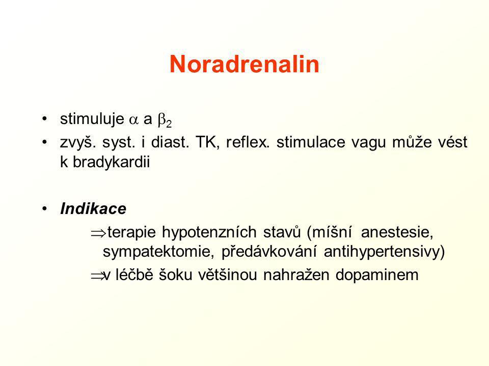 Noradrenalin stimuluje a a b2