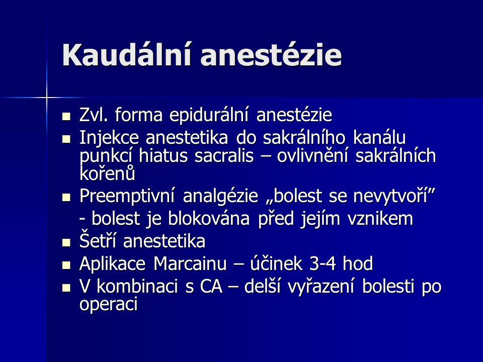 Kaudální anestézie Zvl. forma epidurální anestézie
