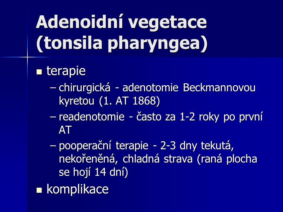 Adenoidní vegetace (tonsila pharyngea)