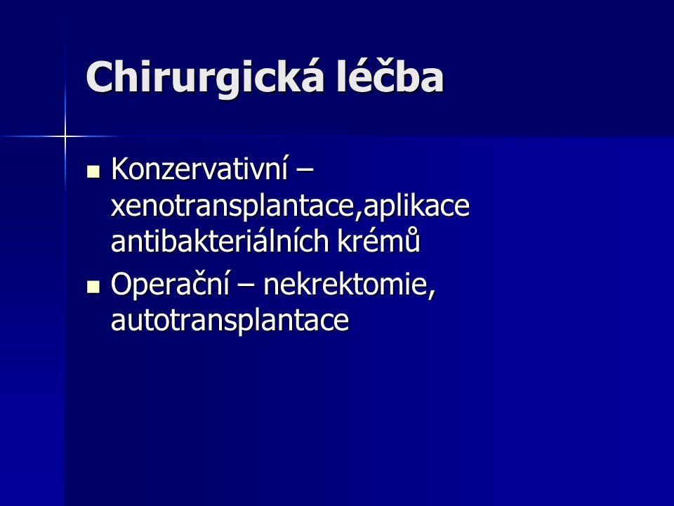 Chirurgická léčba Konzervativní – xenotransplantace,aplikace antibakteriálních krémů.