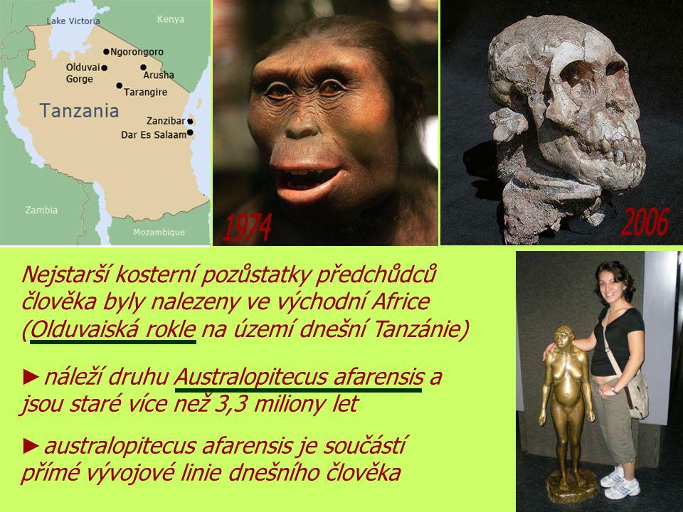 2006 1974. Nejstarší kosterní pozůstatky předchůdců člověka byly nalezeny ve východní Africe (Olduvaiská rokle na území dnešní Tanzánie)