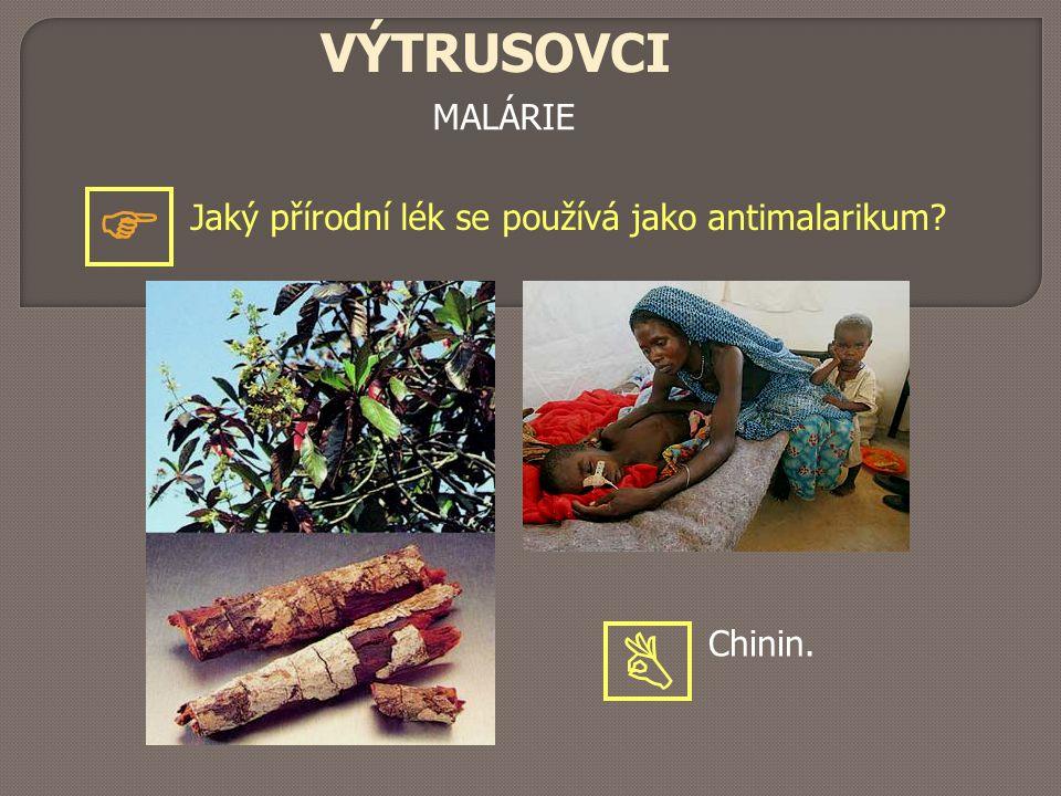 VÝTRUSOVCI MALÁRIE  Jaký přírodní lék se používá jako antimalarikum Chinin. 
