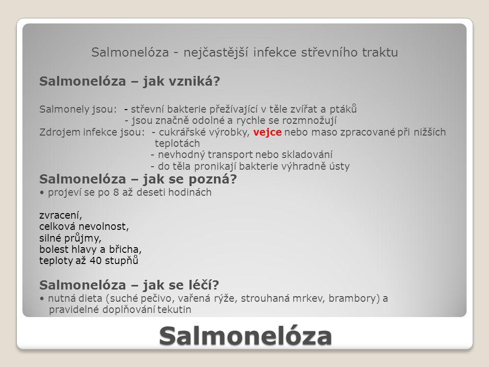 Salmonelóza Salmonelóza - nejčastější infekce střevního traktu