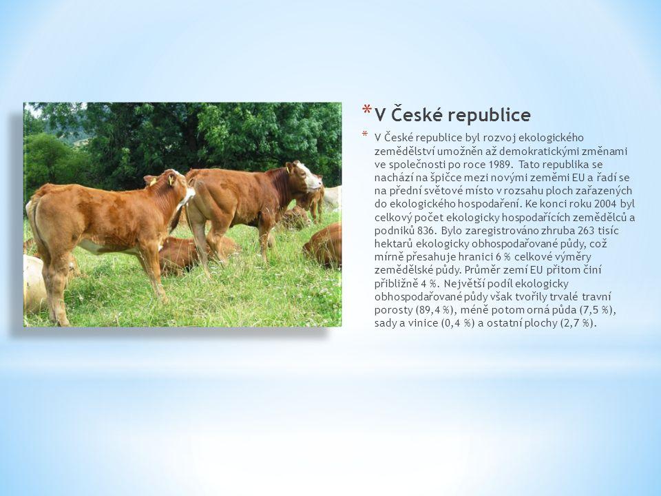 V České republice