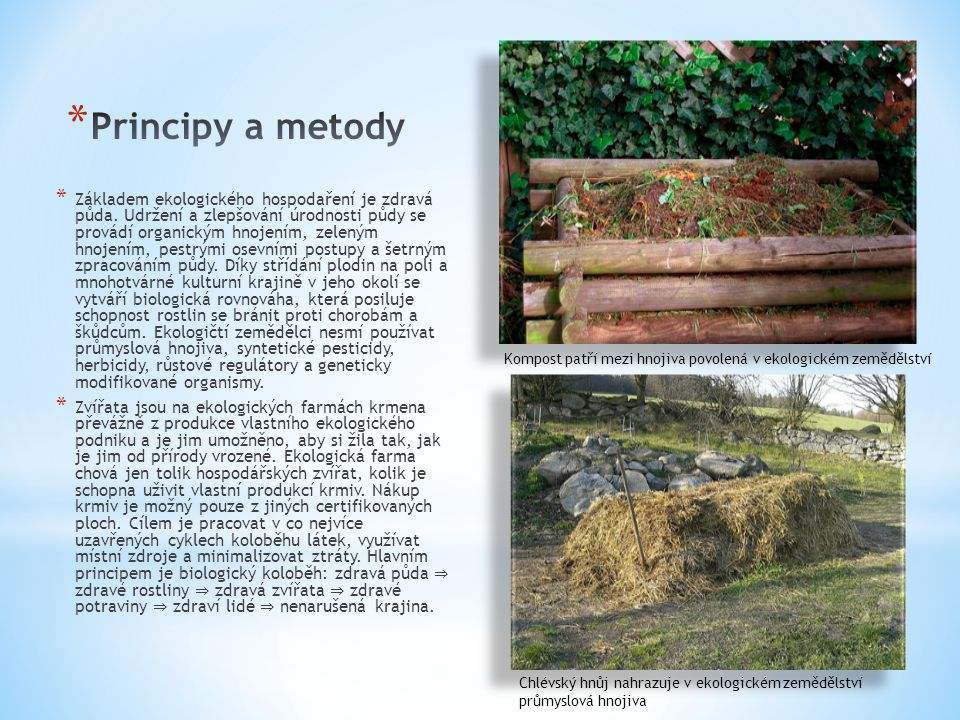 Principy a metody