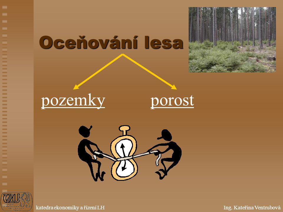 Oceňování lesa pozemky porost