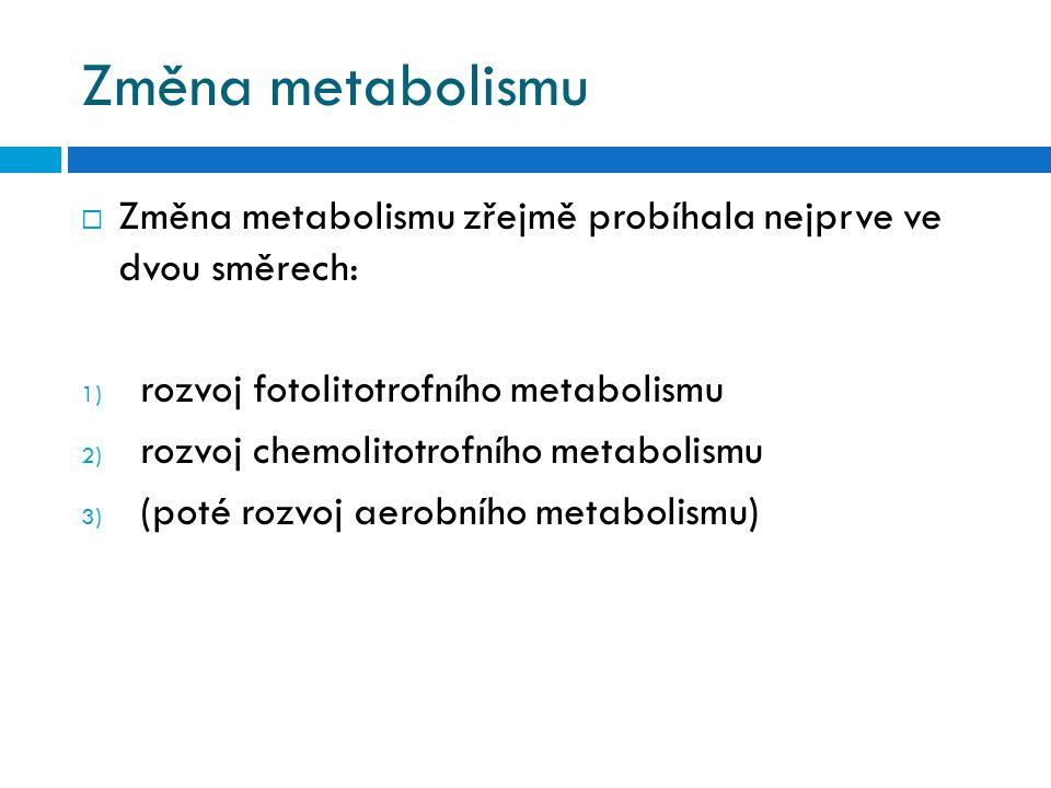 Změna metabolismu Změna metabolismu zřejmě probíhala nejprve ve dvou směrech: rozvoj fotolitotrofního metabolismu.