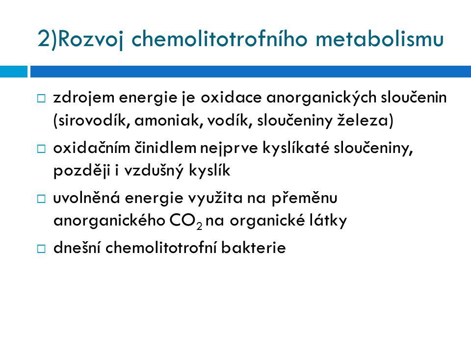 2)Rozvoj chemolitotrofního metabolismu