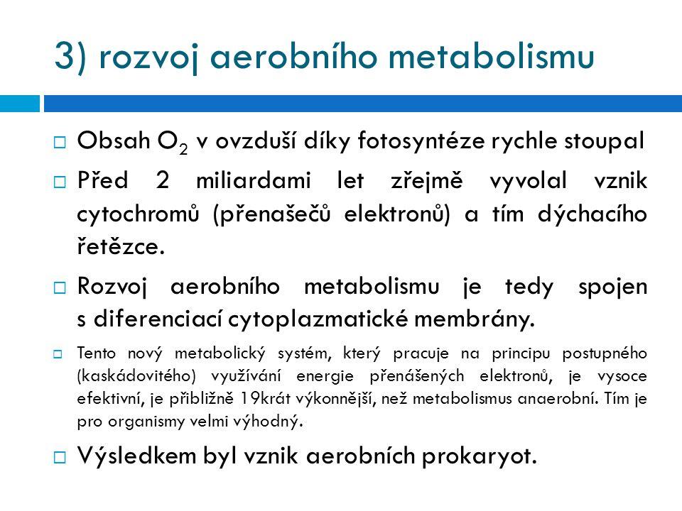 3) rozvoj aerobního metabolismu